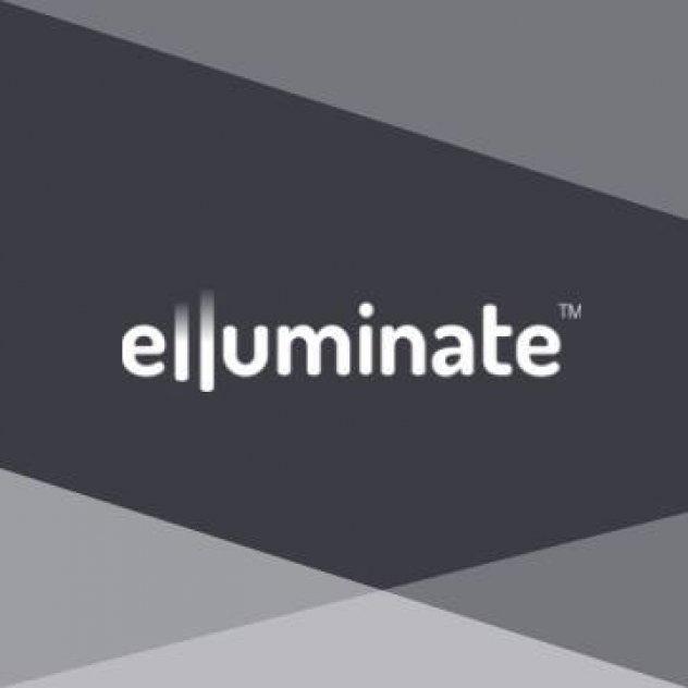 Elluminate Lighting picture