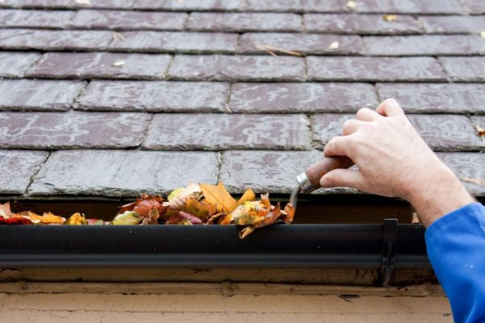 Tennant Window & Gutter Cleaning picture
