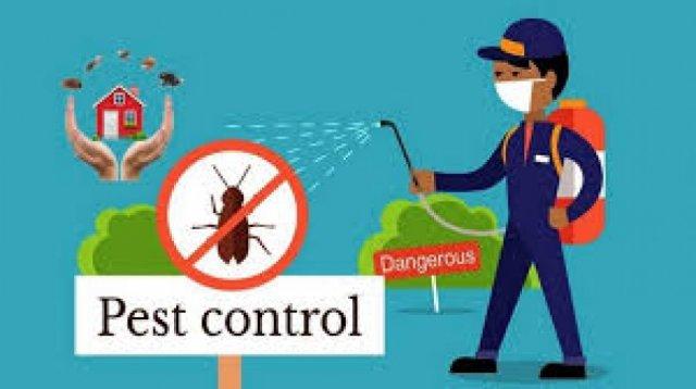 Falls Pest Control